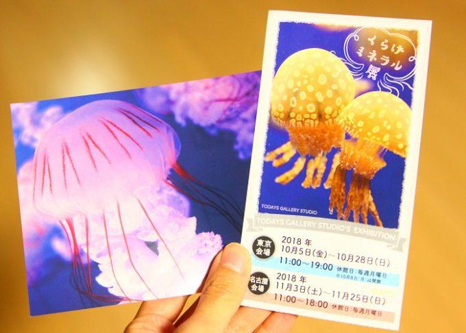 くらげミネラル展 オリジナルポストカード(先着2000名)